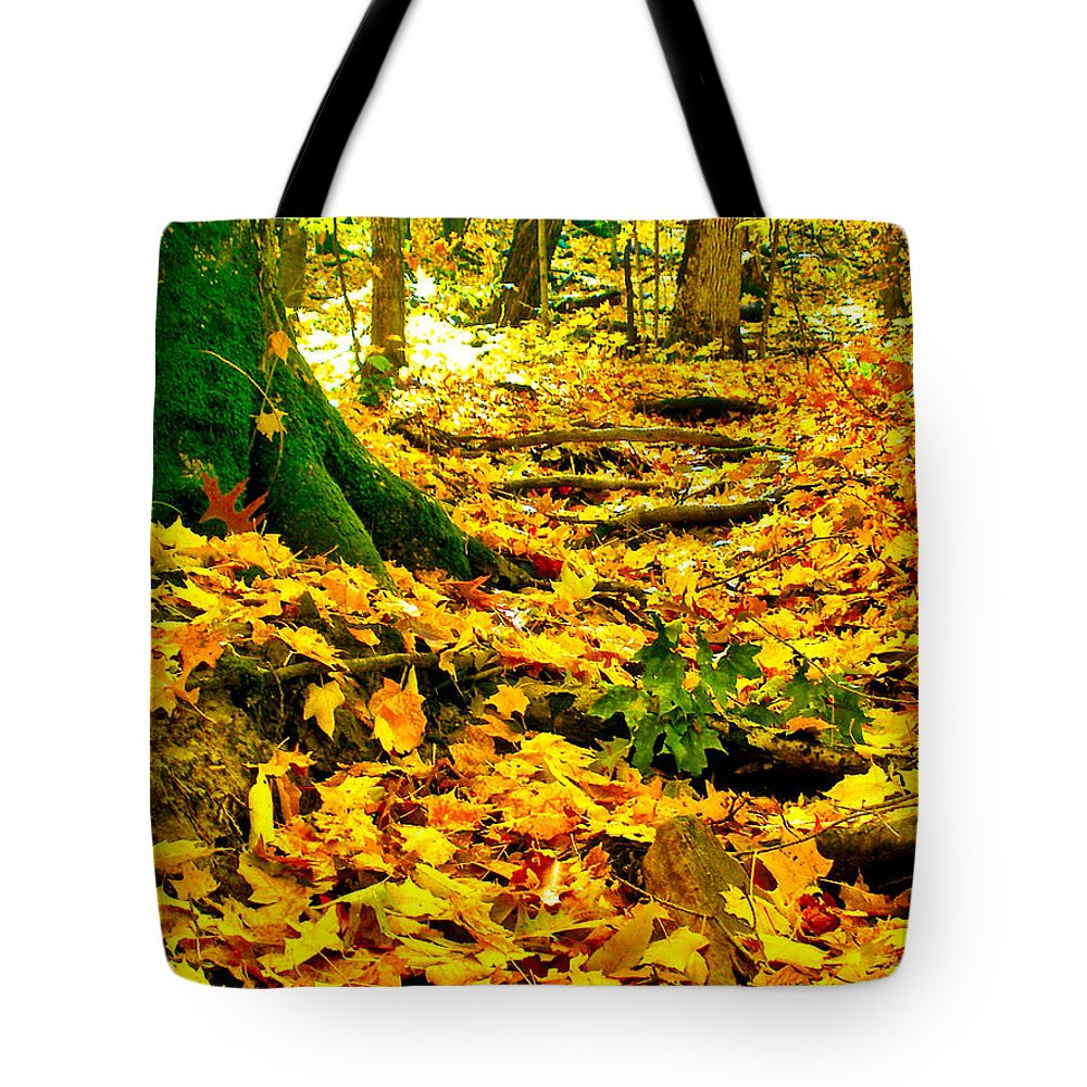 Fall Tote Bag featuring the photograph Root Steps by Zafer Gurel