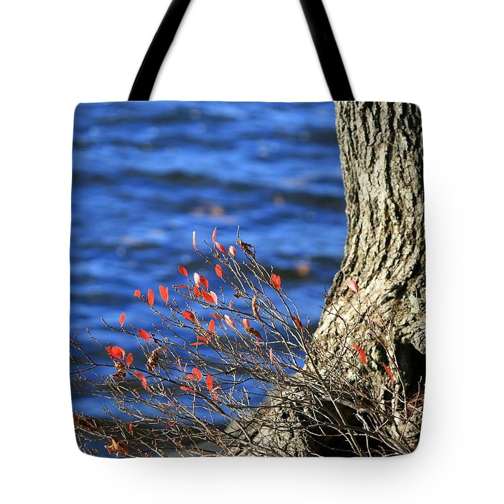 Lake Tote Bag featuring the photograph Rooted In Blue by Neal Eslinger