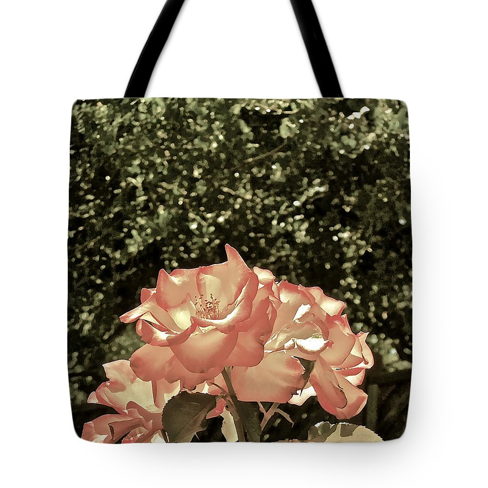 Flowers Tote Bag featuring the photograph Rose 55 by Pamela Cooper