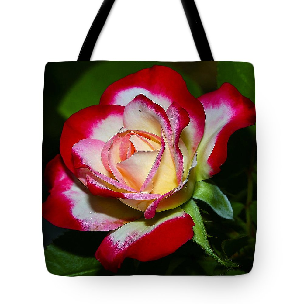 Rose Tote Bag featuring the photograph Rose 8 by Ingrid Smith-Johnsen
