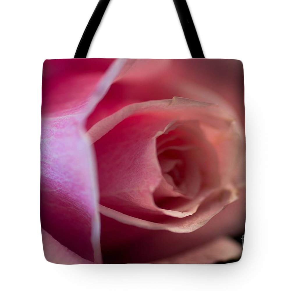 Rose Tote Bag featuring the photograph Rose -gentleness by Sandra Clark