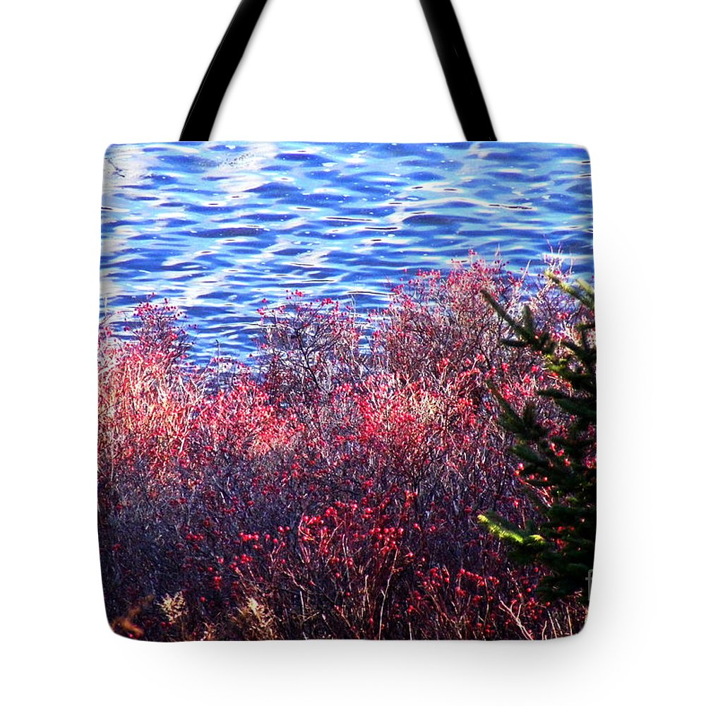 Rosehips Tote Bag featuring the photograph Rose Hips By The Seashore by Barbara Griffin