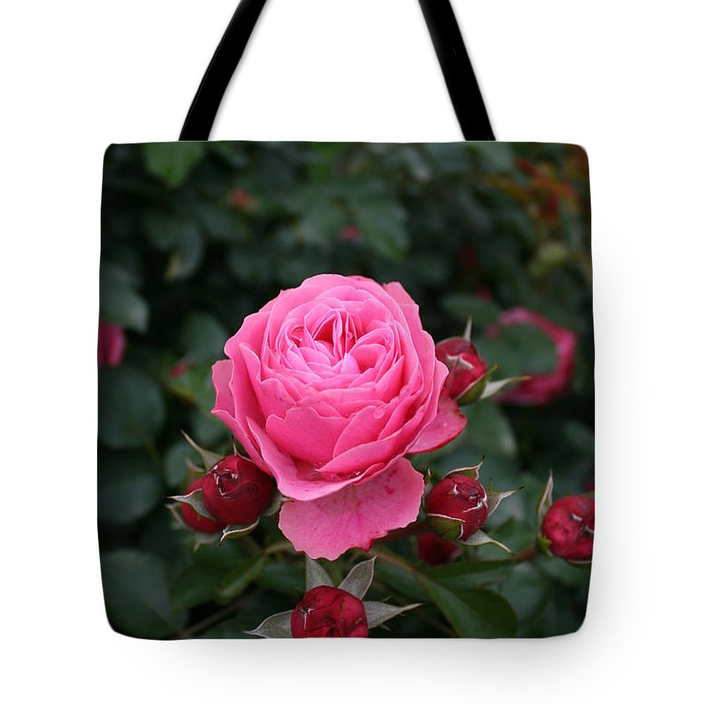 Rose Tote Bag featuring the photograph Rose Love by Christiane Schulze Art And Photography