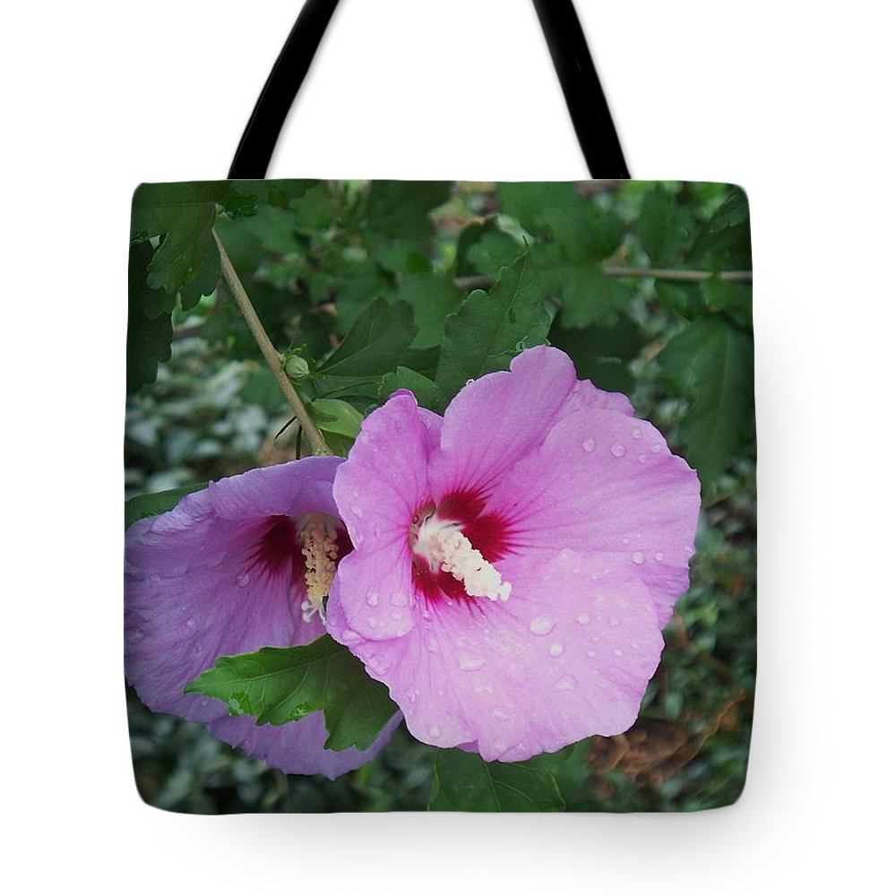 Flower Tote Bag featuring the photograph Rose Mallow by Eric Schiabor