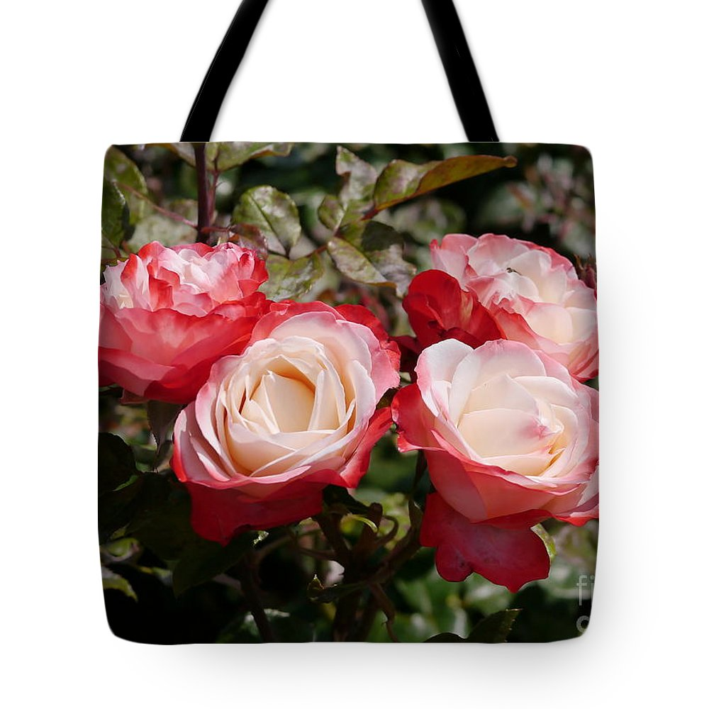 Nostalgia Tote Bag featuring the photograph Rose Nostalgia by John Chatterley