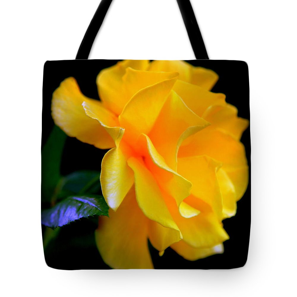 Yellow Roses Tote Bag featuring the photograph Rose Of Cleopatra by Karen Wiles