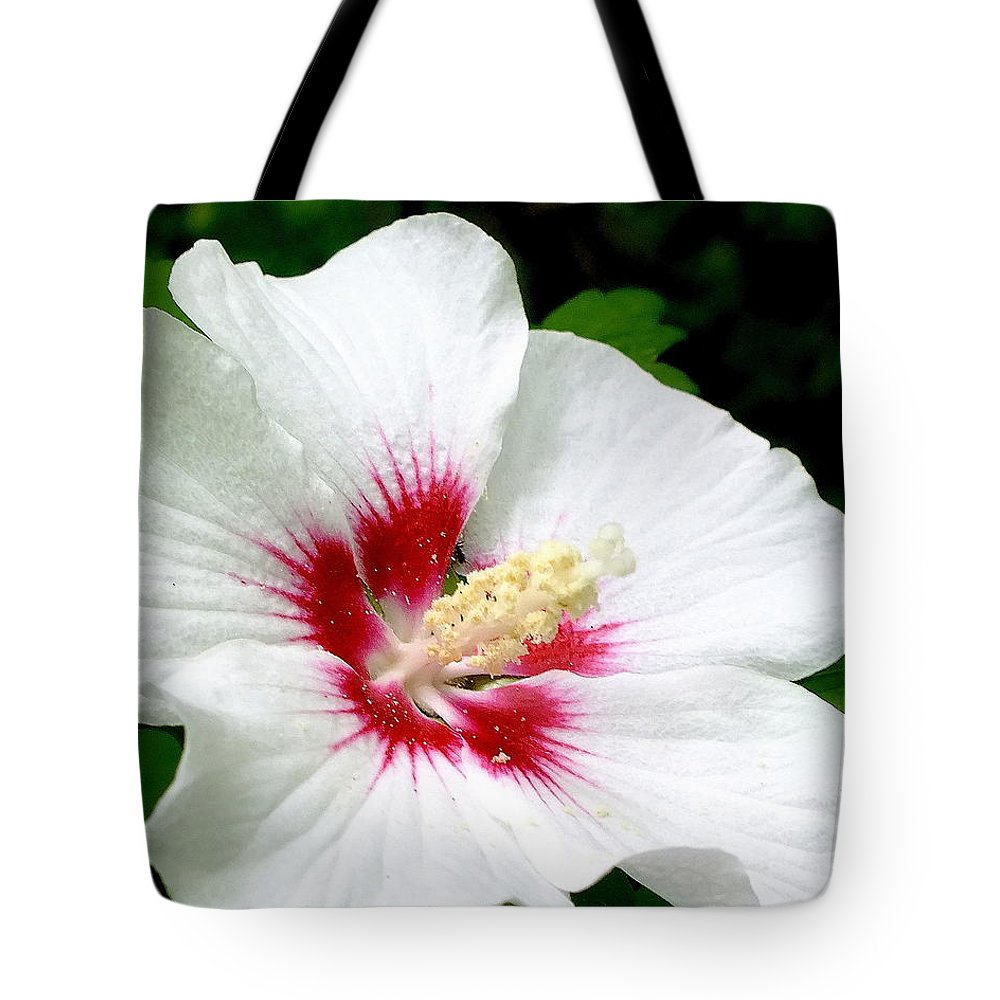 Hibiscus Tote Bag featuring the photograph Rose Of Sharon # 1 by Melissa Bittinger