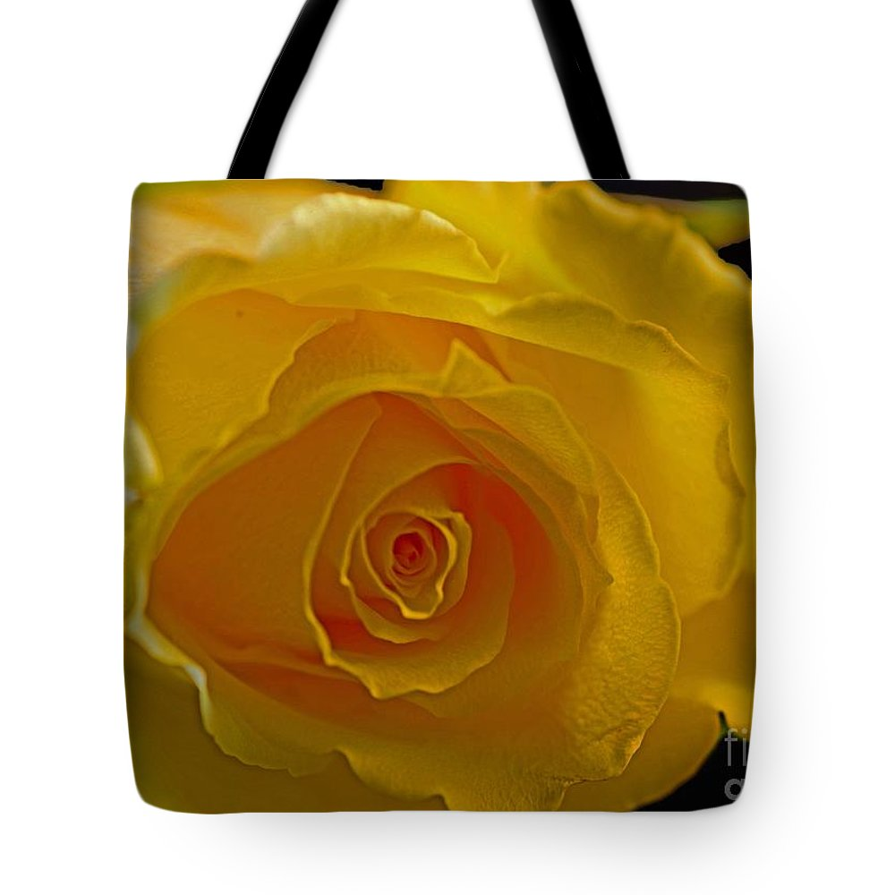 Rose Tote Bag featuring the photograph Rose -remeber Me by Sandra Clark