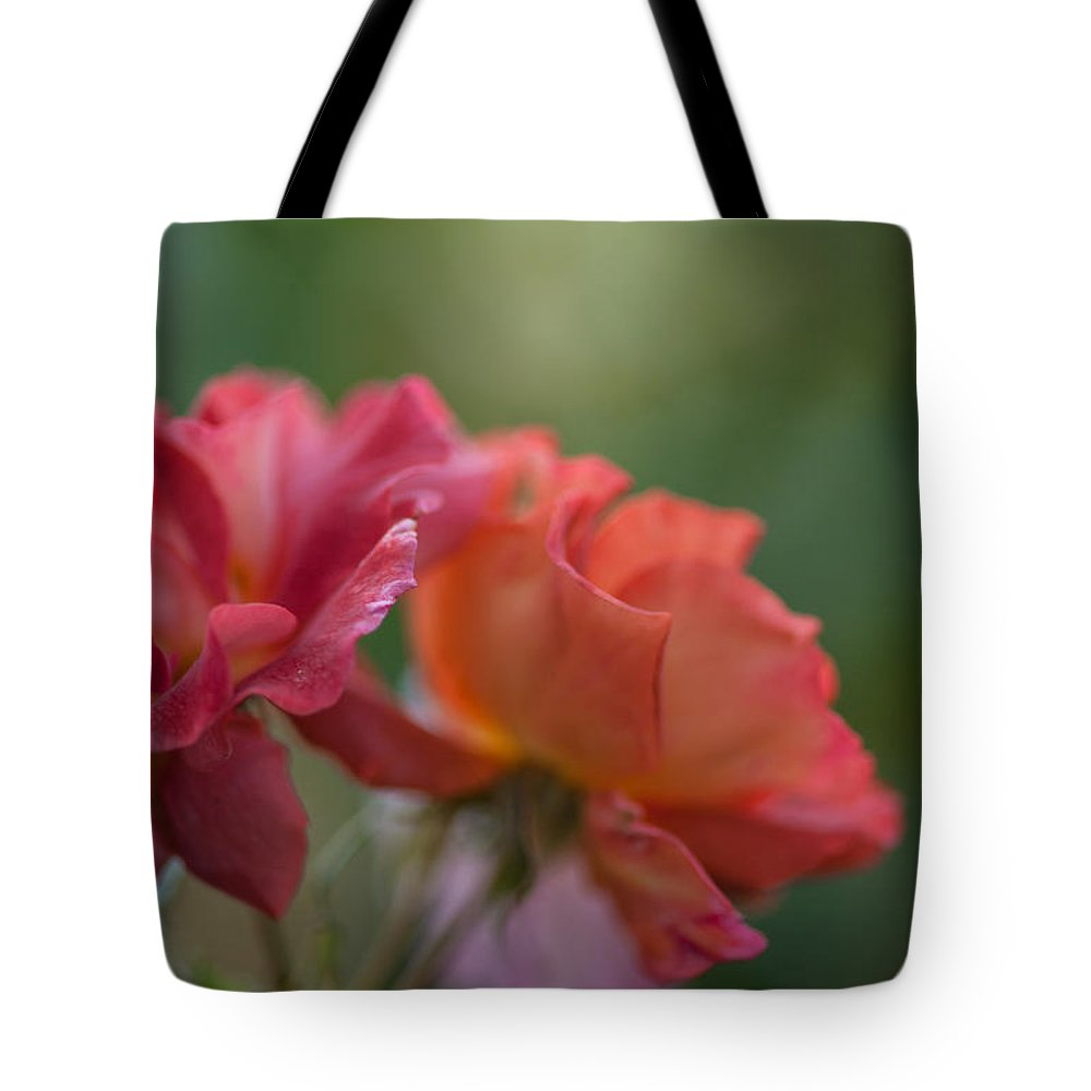 Rose Tote Bag featuring the photograph Rose Tuscan Sun by Mike Reid