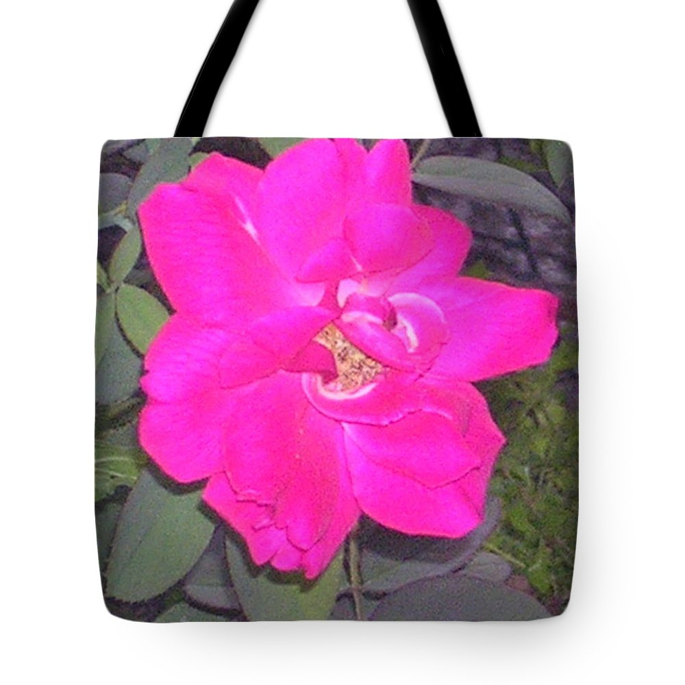 Tote Bag featuring the photograph Rose by Uma Swaminathan