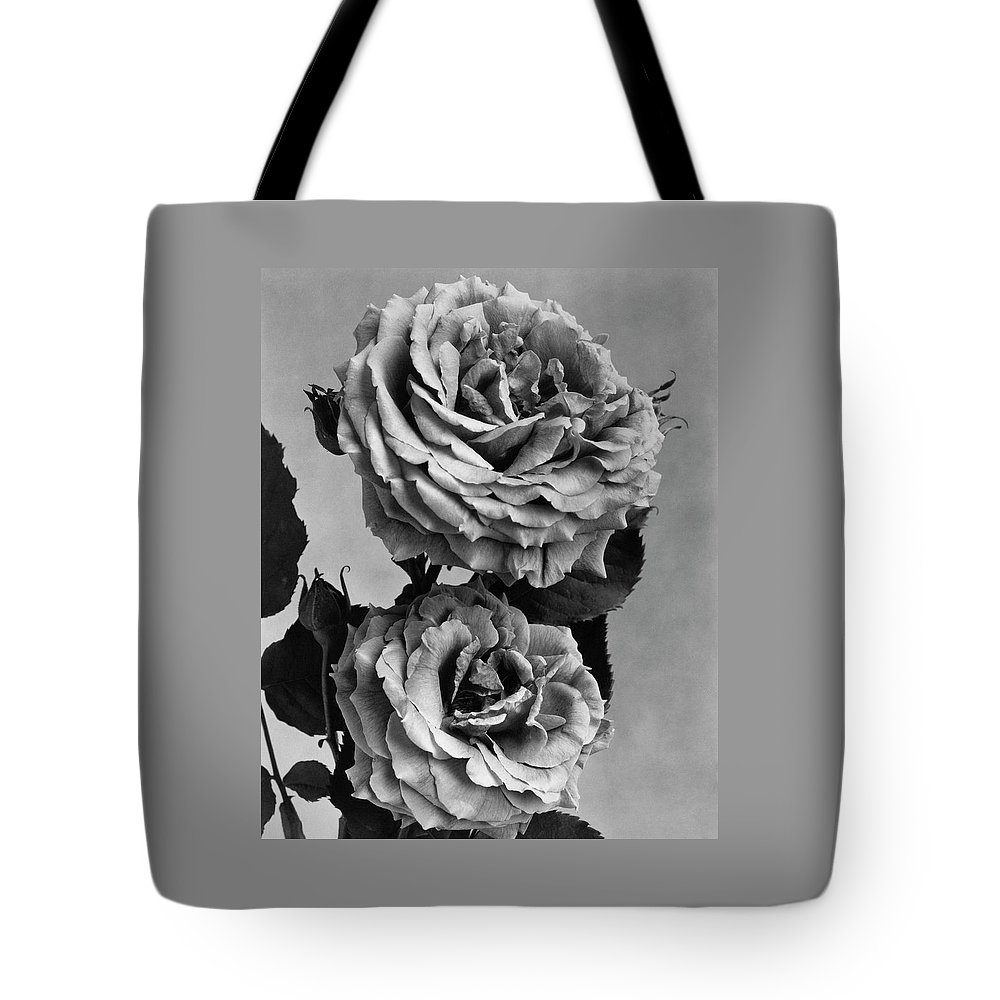 Flowers Tote Bag featuring the photograph Roses by J. Horace McFarland