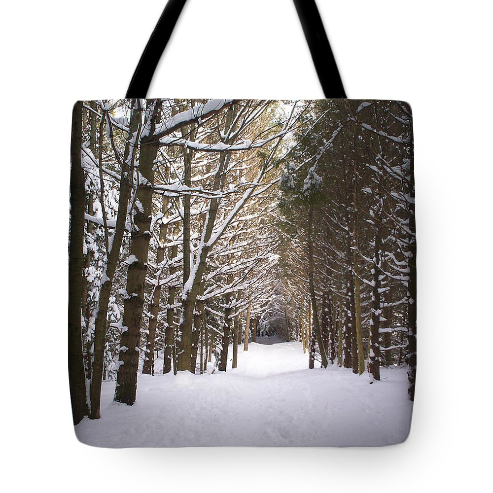 Winter Tote Bag featuring the photograph Roth Park Trail 2 by Richard Andrews