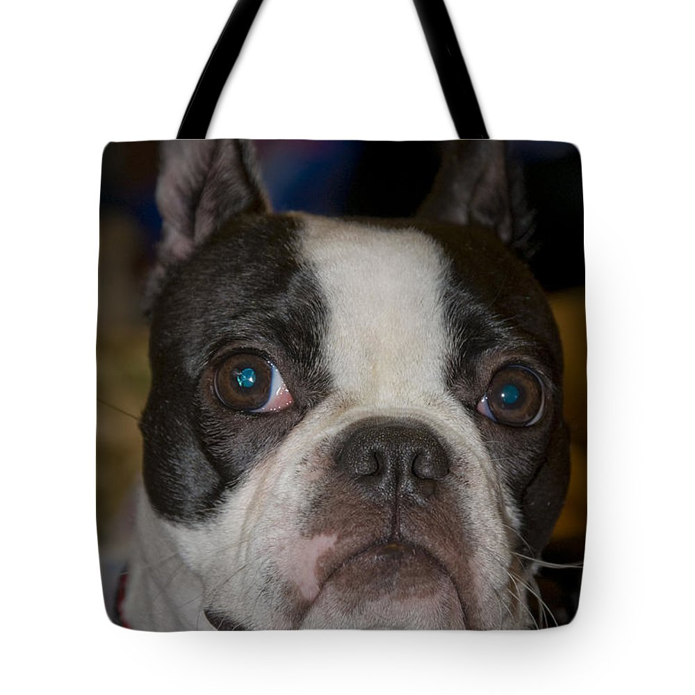 Boston Tote Bag featuring the photograph Roxy by Terry Anderson