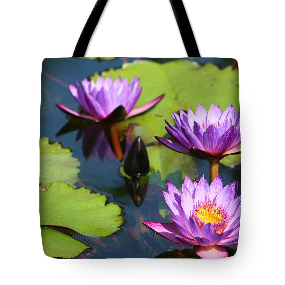 Nymphaea Tote Bag featuring the photograph Royal Purple Water Lilies by Kathy Clark