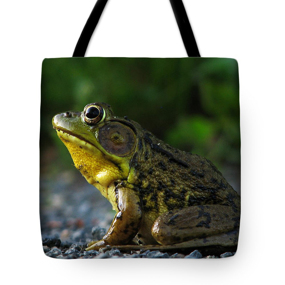 Frog Tote Bag featuring the photograph Rrrrrrbit 2 by Gary Blackman