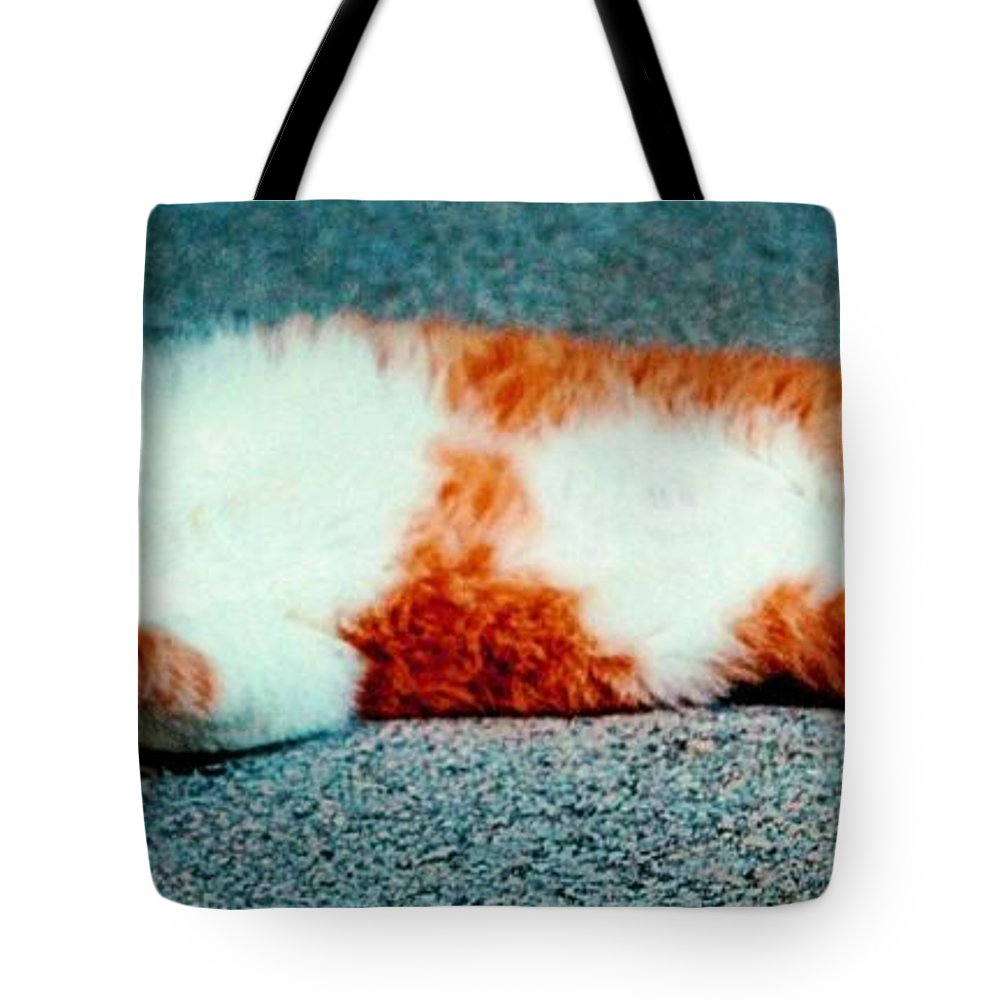 Belly Tote Bag featuring the photograph Rub My Belly by Tara Potts