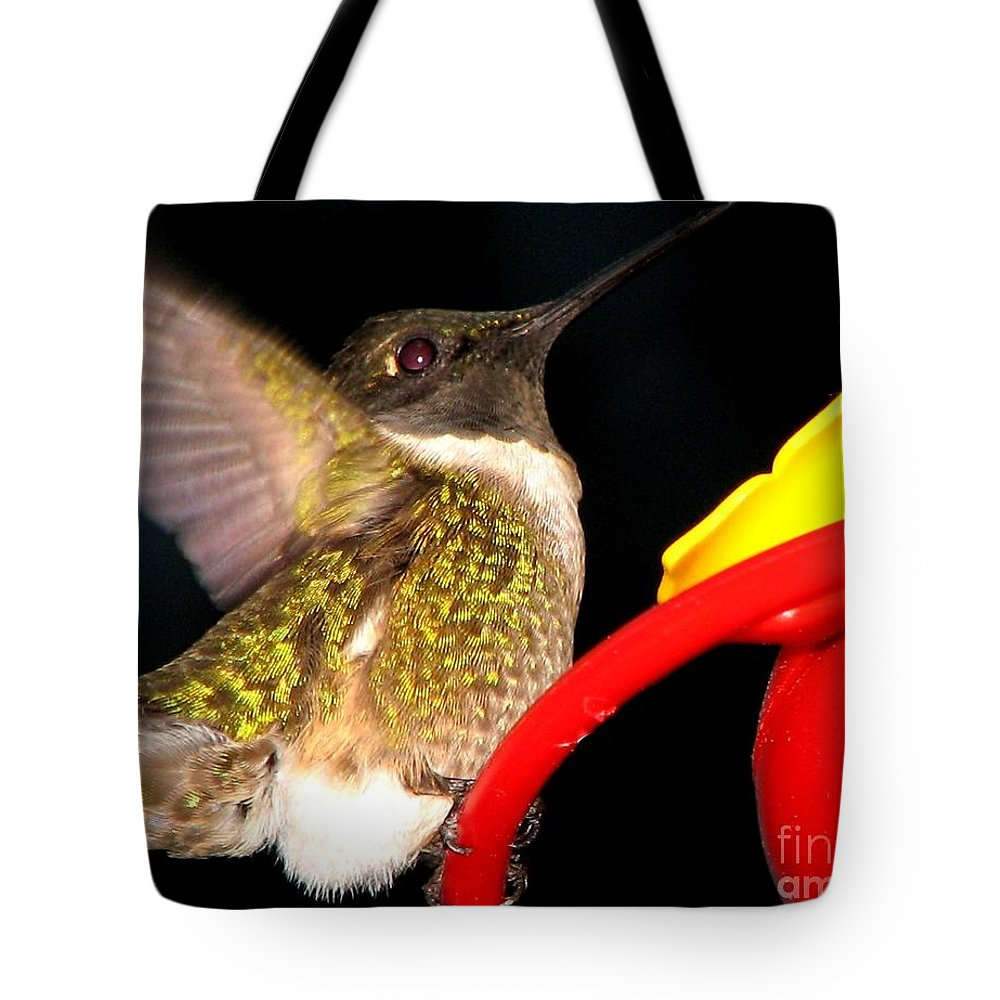Ruby-throated Hummingbird Tote Bag featuring the photograph Ruby-throated Hummingbird Landing On Feeder by Rose Santuci-Sofranko