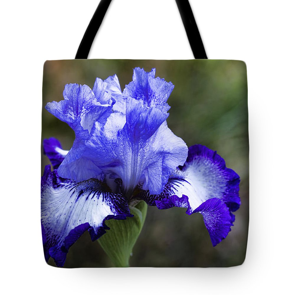 Iris Tote Bag featuring the photograph Ruffles And Fluffles by Kathy Clark