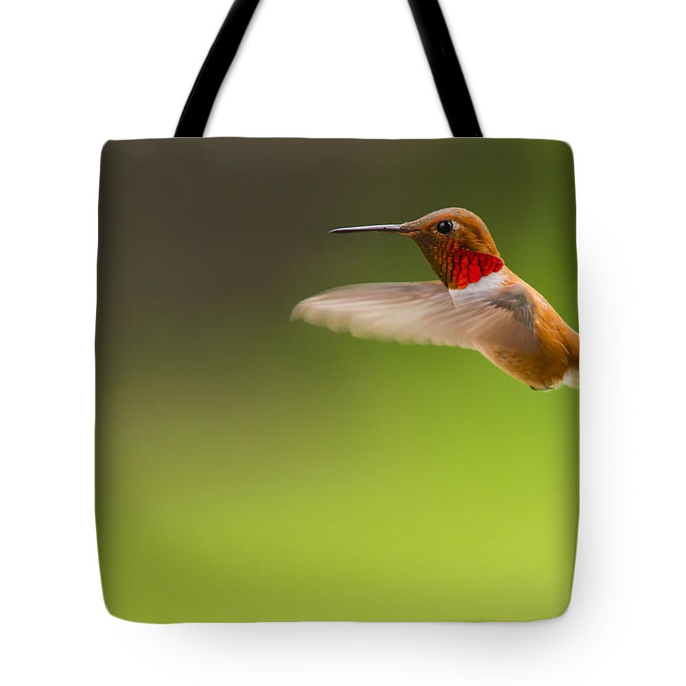 Canada Tote Bag featuring the photograph Rufous Hummingbird Male by Windy Corduroy