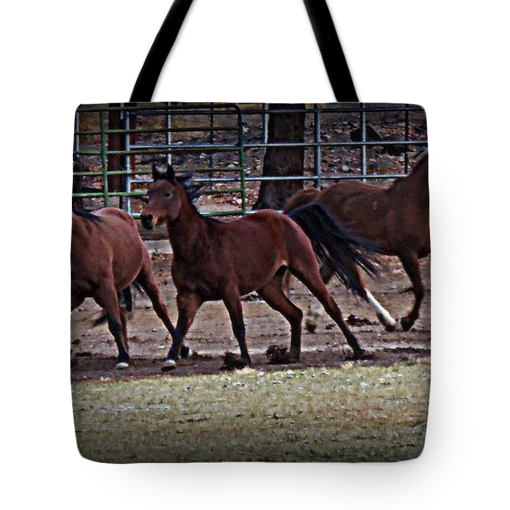 Acrylic Prints Tote Bag featuring the photograph Run Free by Bobbee Rickard