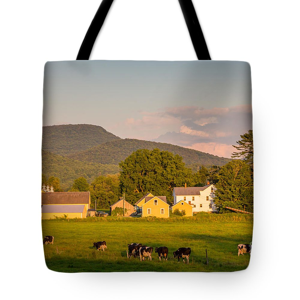 Agriculture Tote Bag featuring the photograph Rupert Vermont Dairy Farm by Susan Cole Kelly
