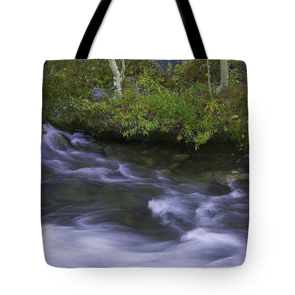 Stream Tote Bag featuring the photograph Rushing Stream And Creek Bank - Eastern Sierra by Ram Vasudev