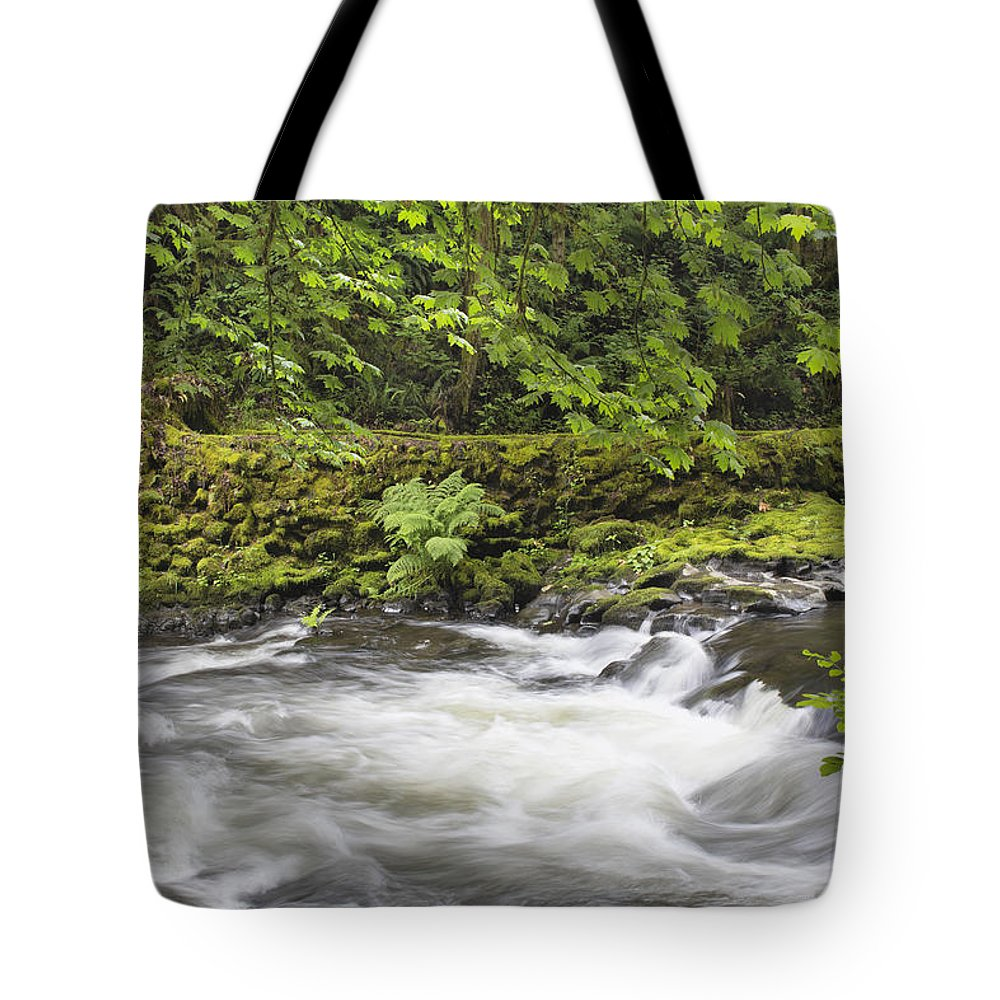 Cedar Tote Bag featuring the photograph Rushing Water At Cedar Creek Washington State by Jit Lim