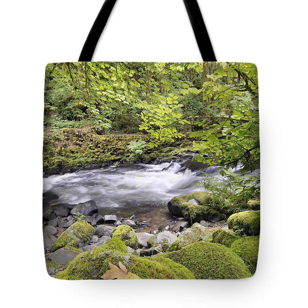 Cedar Tote Bag featuring the photograph Rushing Water With Rocks At Cedar Creek Washington State by Jit Lim
