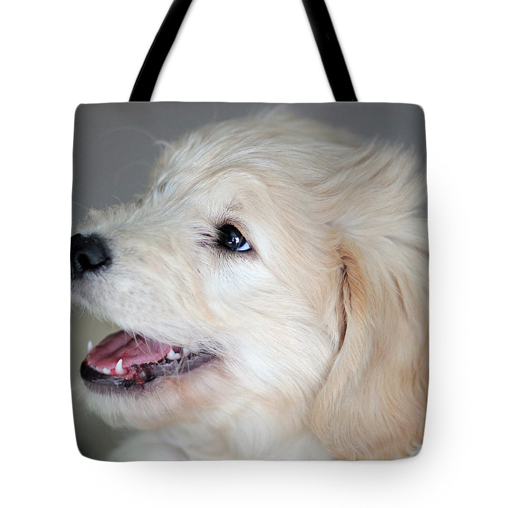 Rusty Tote Bag featuring the photograph Rusty by E Faithe Lester