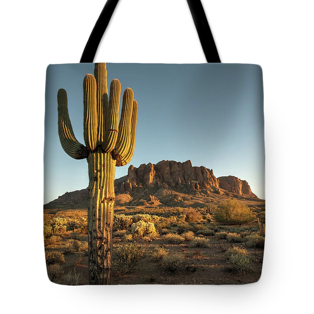 Saguaro Cactus Tote Bag featuring the photograph Saguaro Cactus And Superstition by Kjschoen