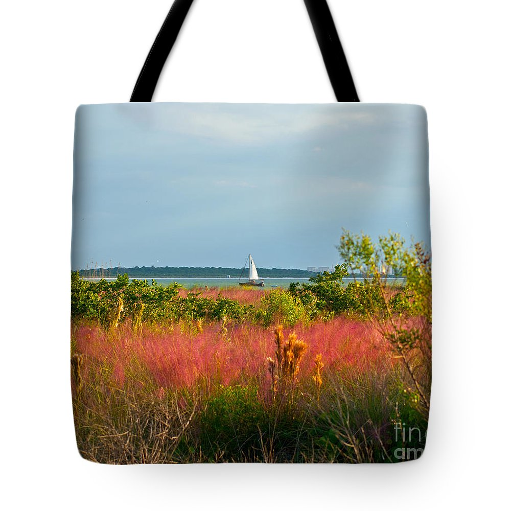 Florida Tote Bag featuring the photograph Sail Boat Honeymoon Island by Stephen Whalen