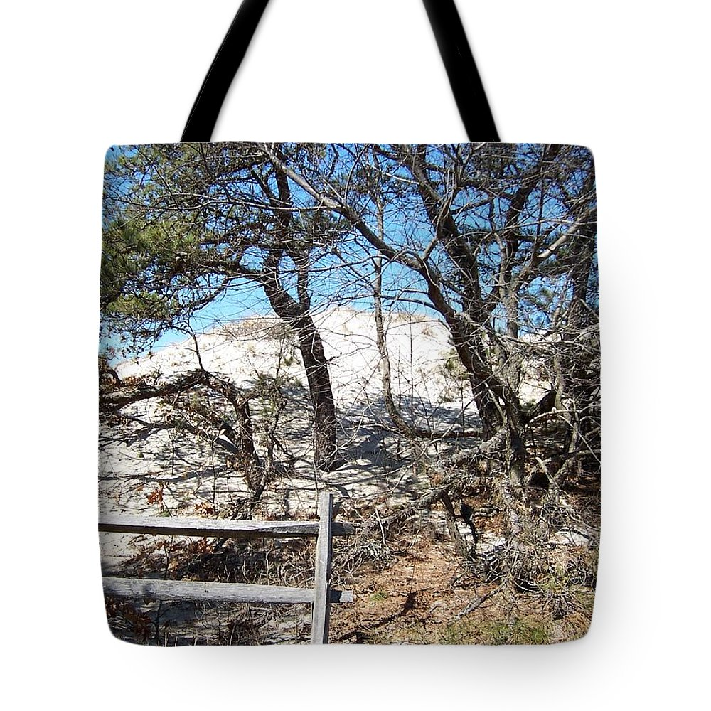 Cranes Beach Tote Bag featuring the photograph Sand Dune With Trees by Catherine Gagne