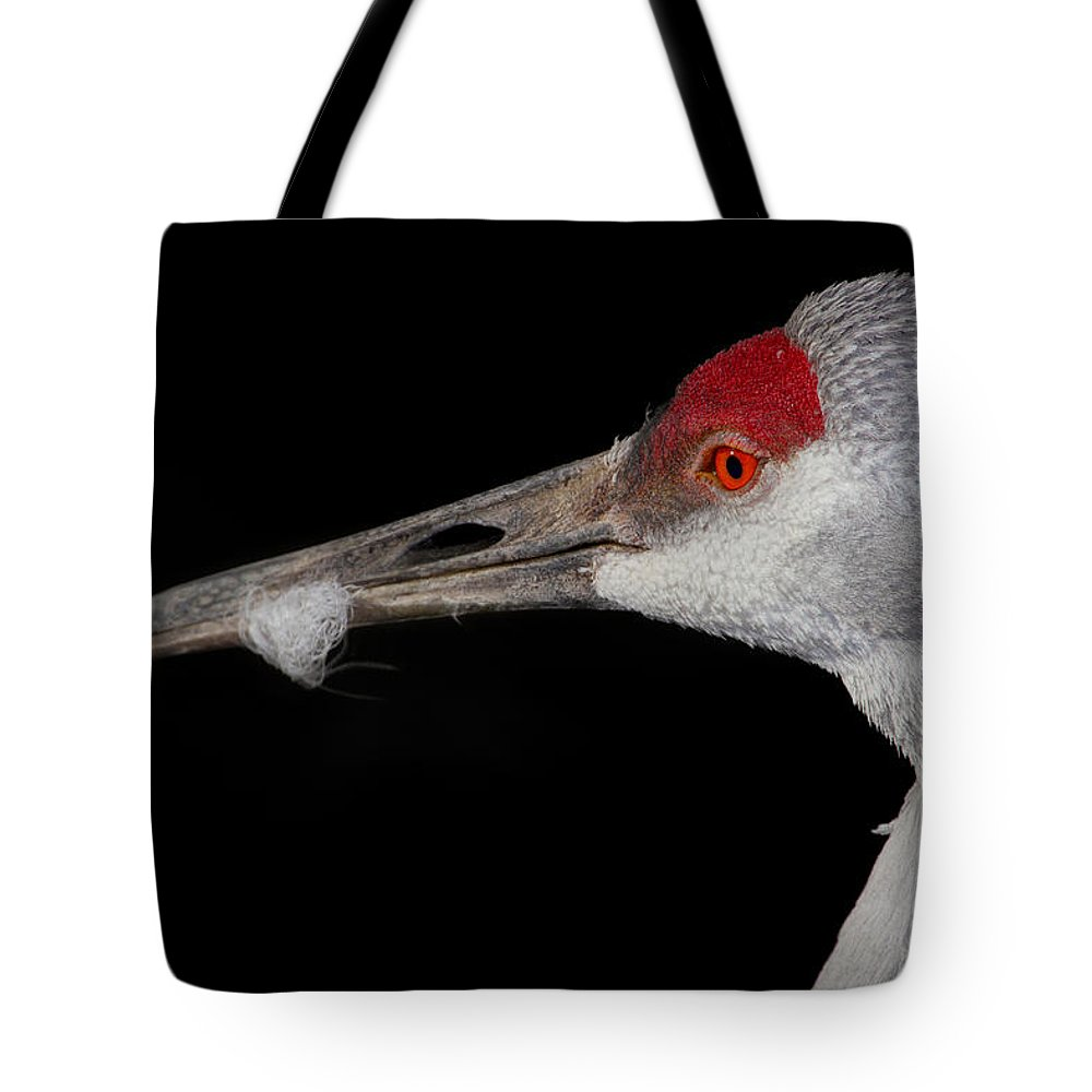 Bird Tote Bag featuring the photograph Sand Hill Crane by John Absher