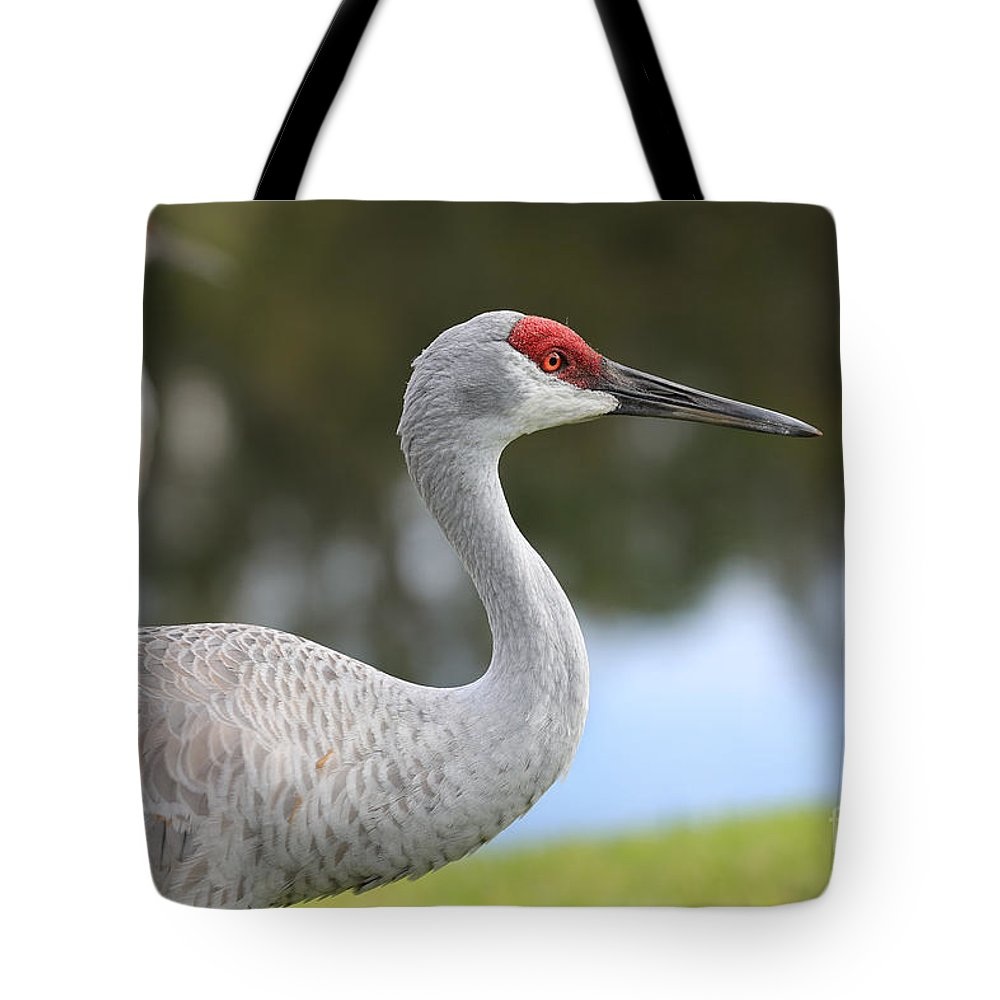 Sandhill Tote Bag featuring the photograph Sandhill And Friend by Carol Groenen