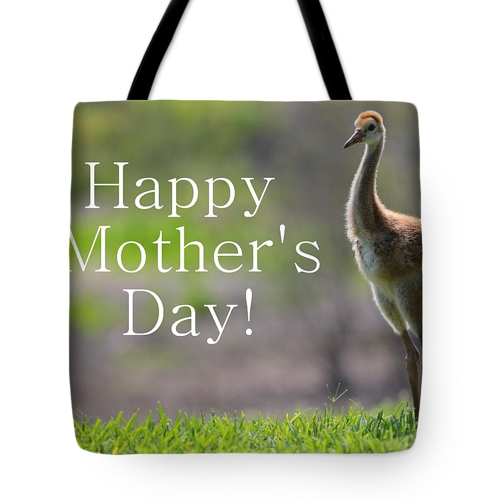 Sandhill Crane Tote Bag featuring the photograph Sandhill Chick Mother's Day Card by Carol Groenen