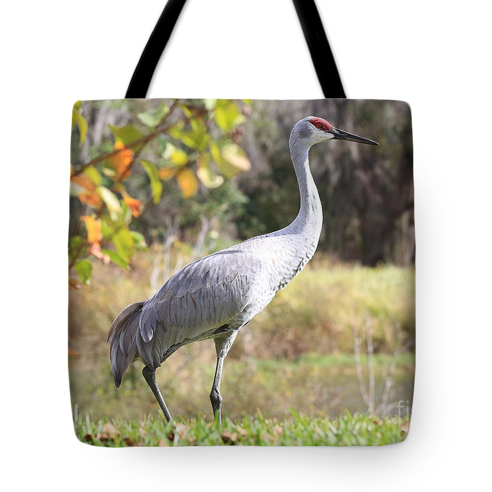 Sandhill Tote Bag featuring the photograph Sandhill Passing By by Carol Groenen