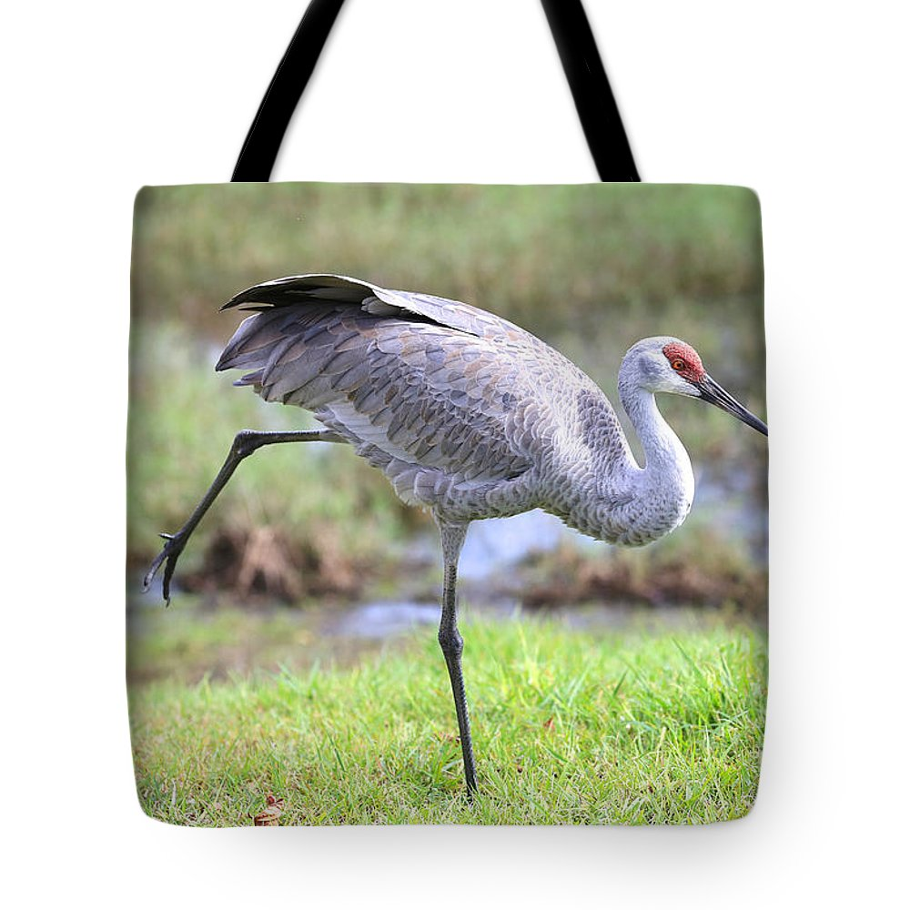 Sandhill Tote Bag featuring the photograph Sandhill Stretch 2 by Carol Groenen