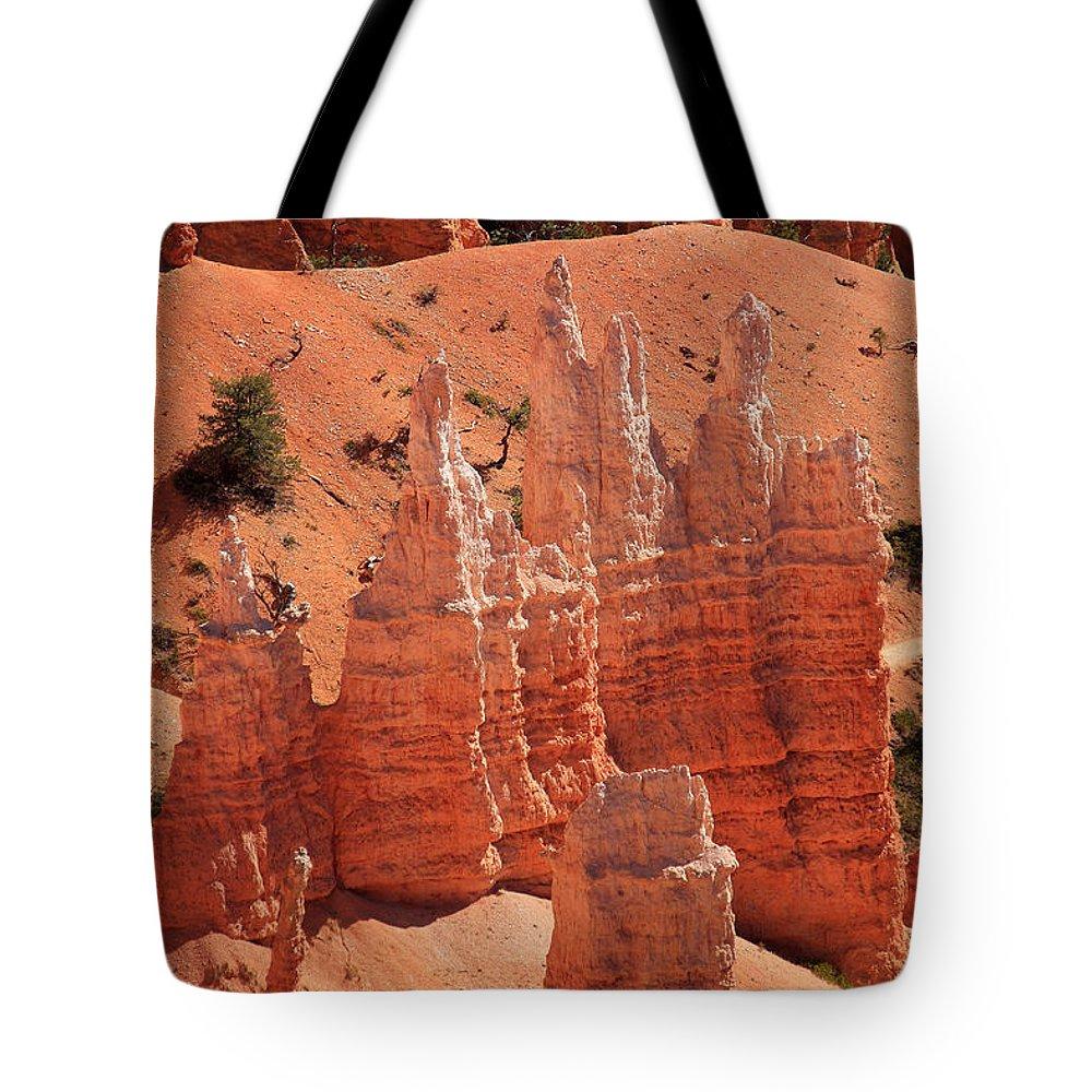 Utah Tote Bag featuring the photograph Sandstone Pillars by Aidan Moran