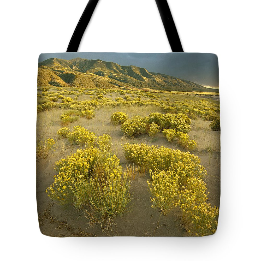 Color Image Tote Bag featuring the photograph Sangre De Cristo Mountains At Great by Tim Fitzharris
