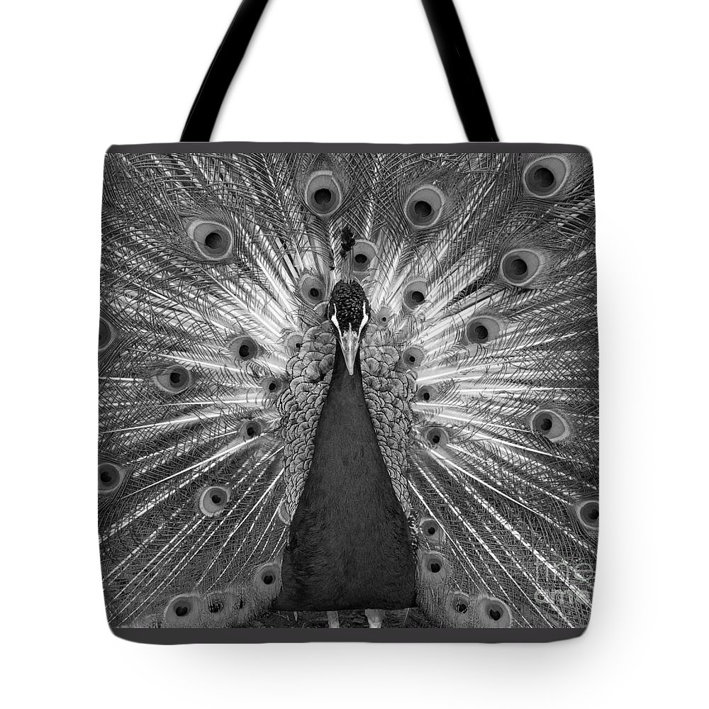 Peacock Tote Bag featuring the photograph Sans Color by Ann Horn