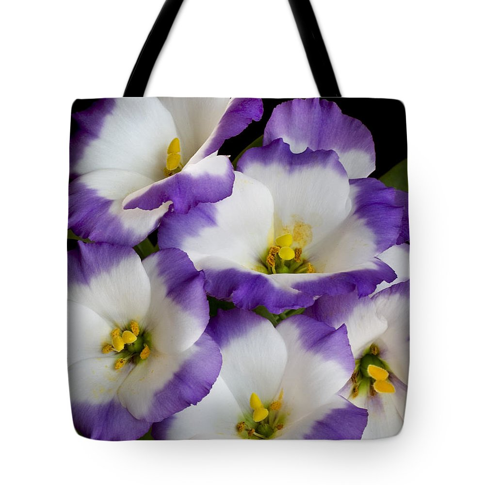 Floral Tote Bag featuring the photograph Sapphire Bluechip Lisianthus by David and Carol Kelly