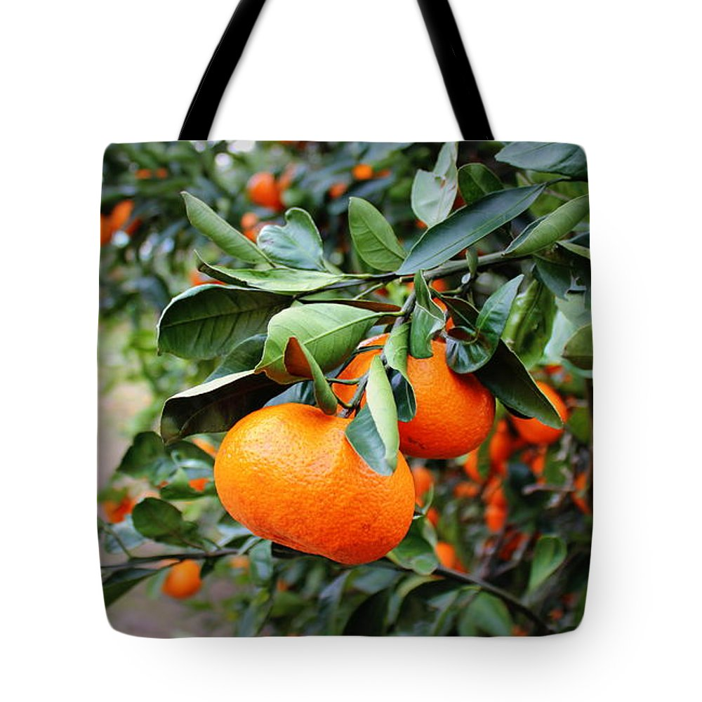 Satsumas Tote Bag featuring the photograph Satsumas by Beth Vincent