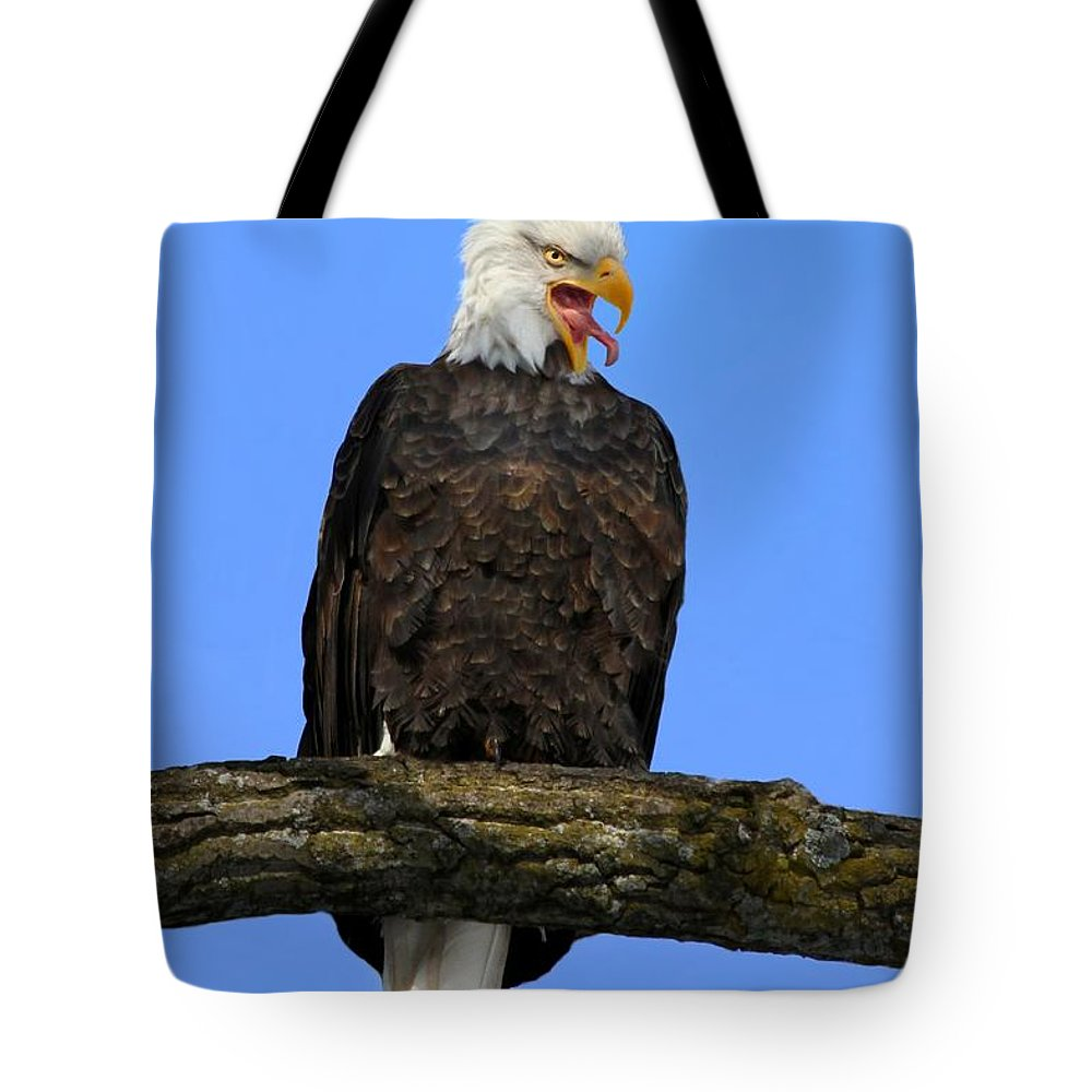 Bird Tote Bag featuring the photograph Say Aah by John Absher