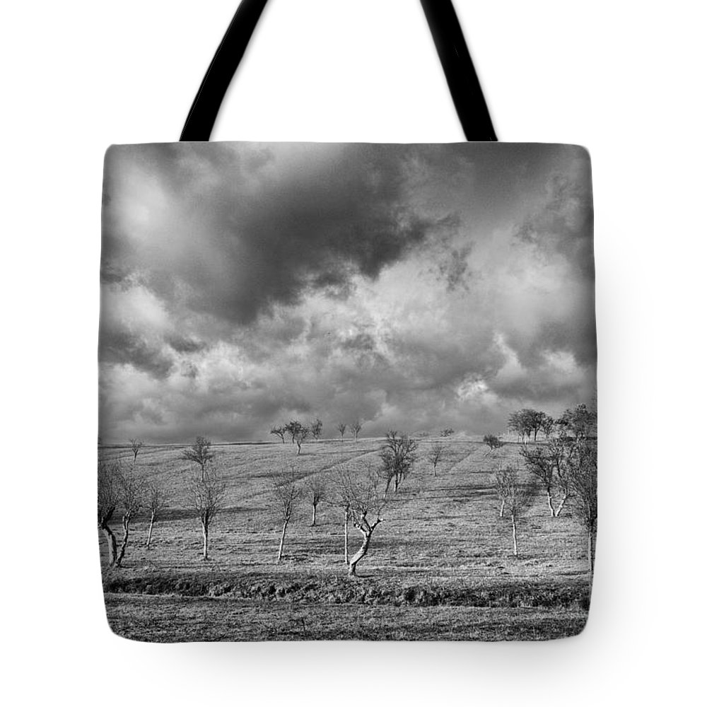 Fields Tote Bag featuring the photograph Scattered Trees by Brothers Beerens