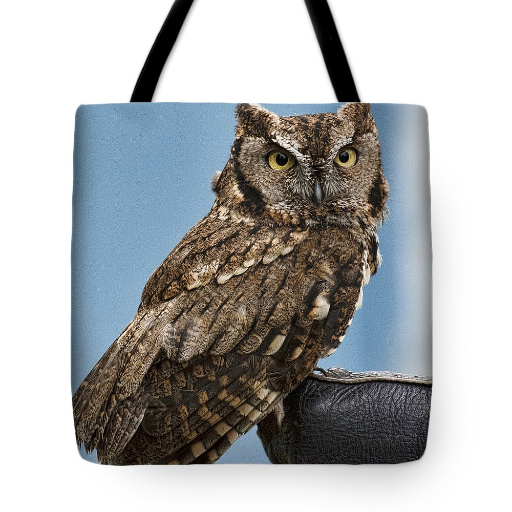 Screech Owl Tote Bag featuring the photograph Screech Owl by Wes and Dotty Weber