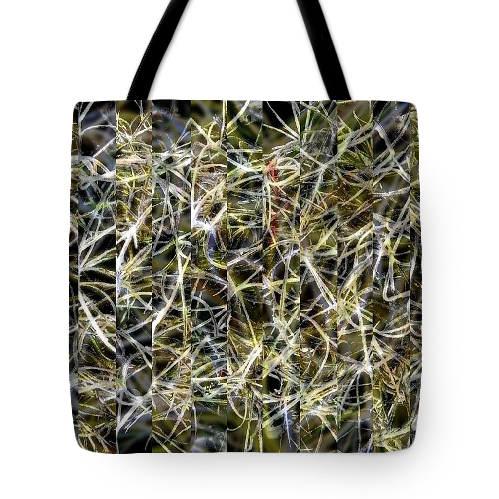 Abstract Tote Bag featuring the photograph Scrim For Leni by Roger Leege