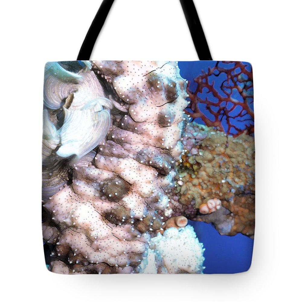 Micronesia Tote Bag featuring the photograph Sea Cucumbers 1 by Dawn Eshelman