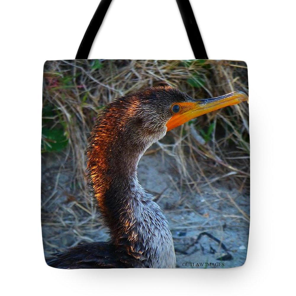 Sea Tote Bag featuring the photograph Sea Duck by Holly Dwyer