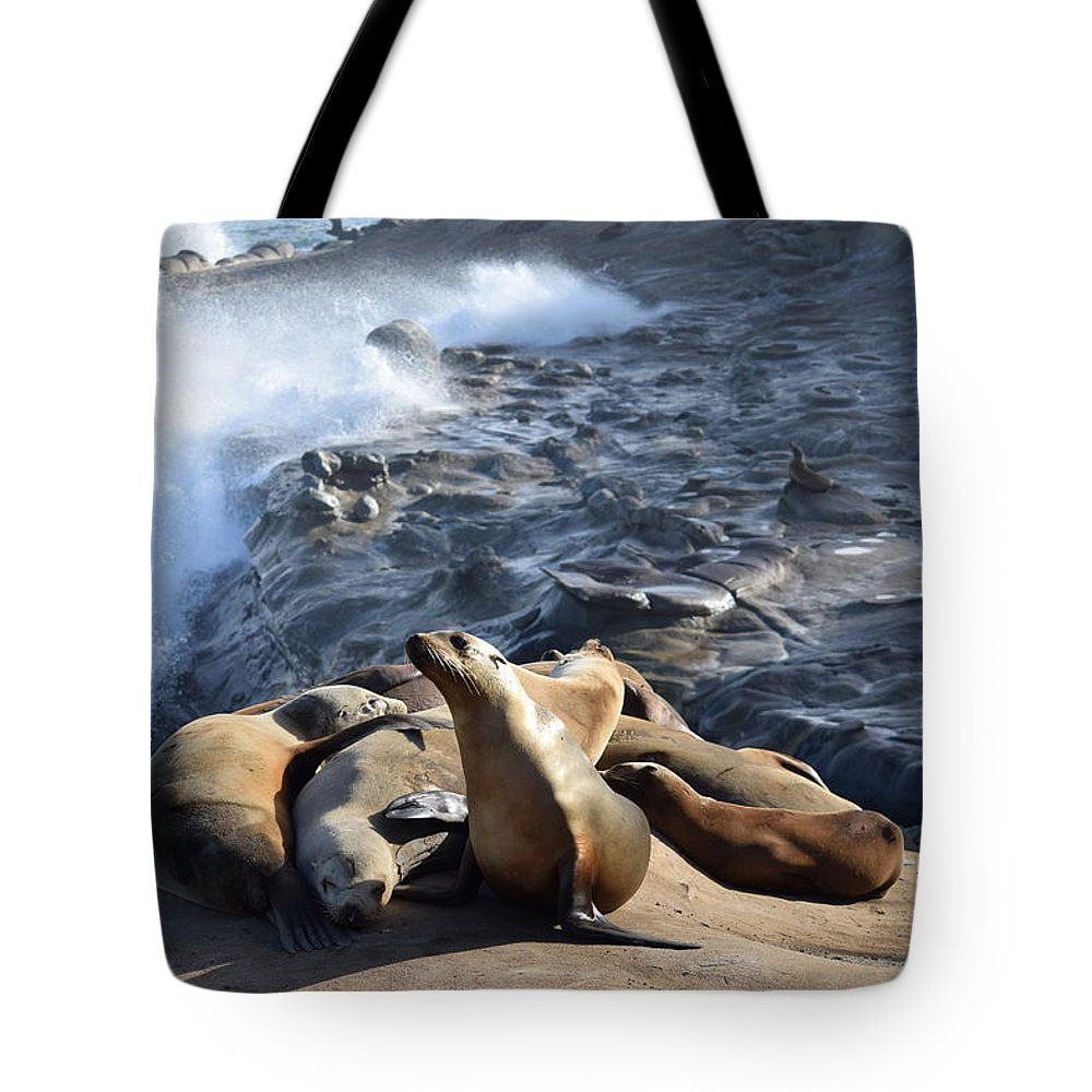 Sea Lions Tote Bag featuring the photograph Sea Lions Seek Shelter by Eric Johansen