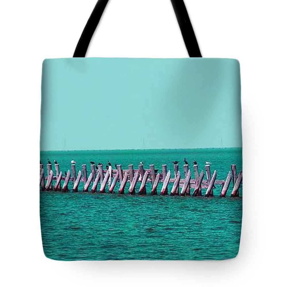 Seagulls Tote Bag featuring the photograph Seabird Lineup by Heather Taylor